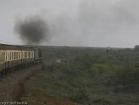 Kenya_3327
