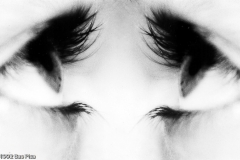 eyes-sanne