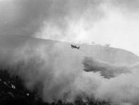1994 - Spain Fire