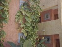 RWmexico2002-159