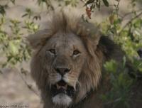 Kenya_0544