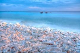 Curacao2010-1631