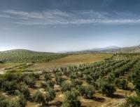 2012-Spain_Benalmadena_2012-2544