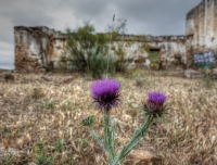 2012 - Spain Ruins