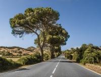 2013 - Menorca 2013-0331.jpg