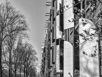 Amsterdam-2015-38.jpg