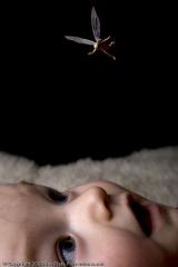 kerstkaart-dec-2008--001